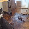 water damage restoration website