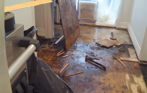 water damage restoration website